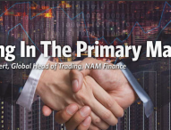 Trading In The Primary Markets